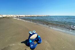 Spiaggia del Pareus Beach Resort - Stabilimento baneare Baia Blu